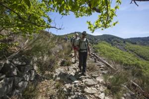Les Monts d'Ardèche
